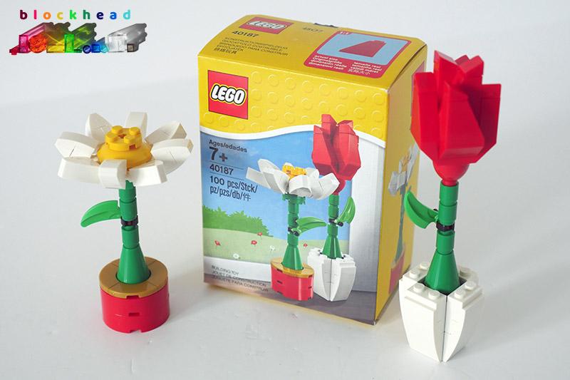 40187 Flower Display