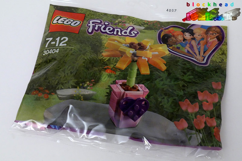 30404 Friends Flower Polybag